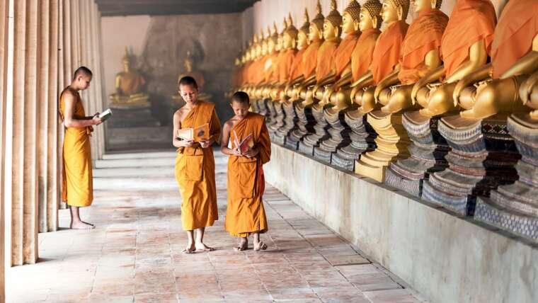 Język tajski – co musisz wiedzieć?